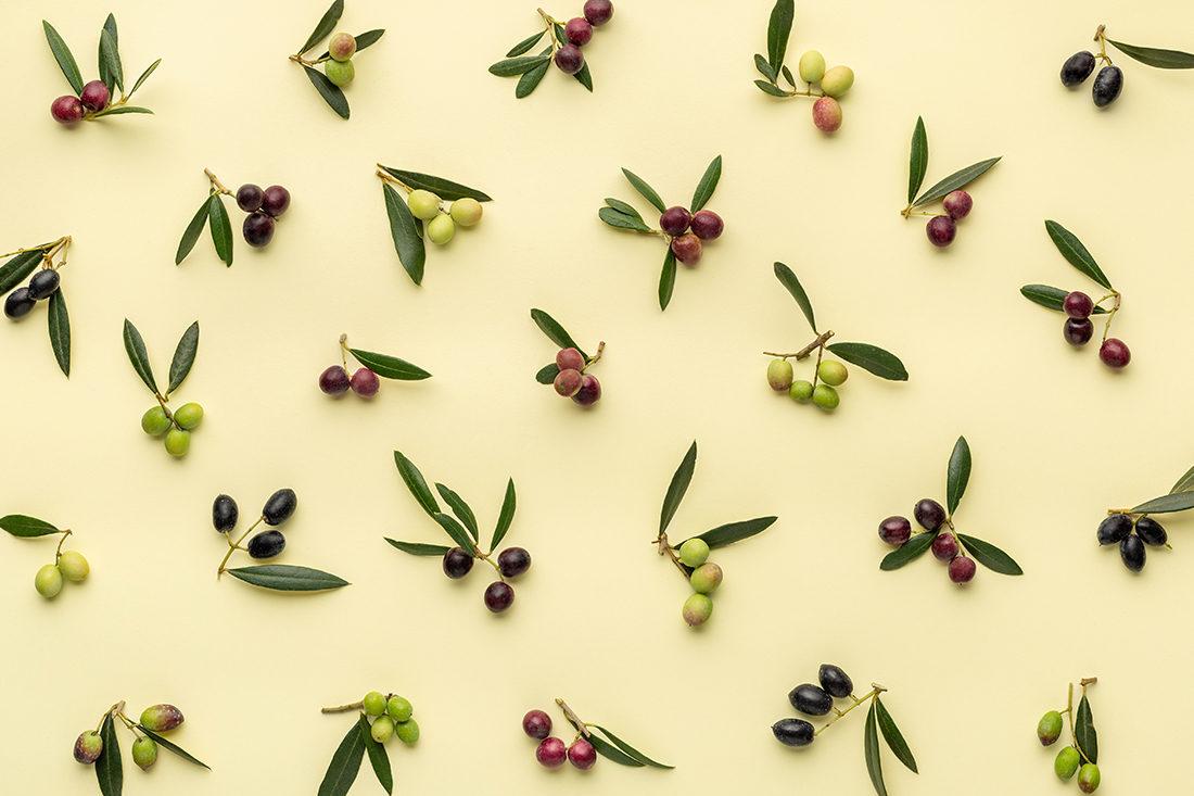 fundació onyar olives